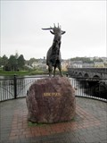 Image for King Puck - Killorglin, County Kerry, Ireland
