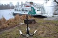 Image for Cable Ferry Kiewitt - Lake Templin - Germany