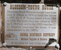 Image for Blossom-Young House