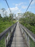 Image for Swinging Bridge over Belize River - Roaring Creek, Belize