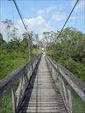 Image for Swinging Bridge over Belize River - Roaring Creek, Belize