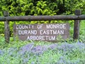 Image for Durand-Eastman Park Arboretum - Rochester, NY