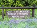 Image for Durand-Eastman Park Arboretum - Rochester, NY