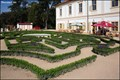 Image for Low Box Maze / Buxusové bludište in the Labyrintarium of Loucen Chateau (Czech Republic)