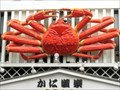 Image for Giant Crab - Kyoto, Japan