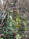 Image for Ashill Parish - Milestone 1 ( Taunton 9 miles Ilminster 3 miles)