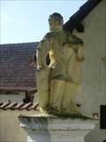 Image for St. John of Nepomuk // sv. Jan Nepomucký - Tman, Czech Republic
