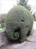Image for Elephant Topiary - Denton, Northampton.