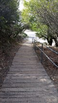 Image for Mt Tamalpais Boardwalk - Mill Valley, CA