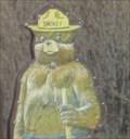 Image for Smokey Bear on Hway 70 - Beckwourth, CA