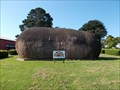 Image for A Gigantic Spud - Sunday Strip - Robertson, NSW
