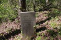 Image for 17th Tennessee Infantry Regiment Marker - Chickamauga National Battlefield