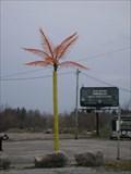 Image for Tiki Escapes Electric Palm Tree - Hawkstone, Ontario, Canada