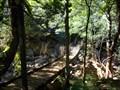 Image for First Suspension Bridge - Lower Falls Walk, Minnamurra Rainforest, Jamberoo, NSW