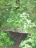 Image for Hypogée à vestibule néolithique dit le Trou à morts - Parmain, France
