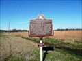 Image for McGuffee Mounds: Ancient Mounds Trail
