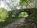 Image for Green Lane Bridge Over Trans Pennine Trail - Godley, UK