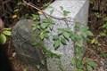 Image for Mason-Dixon Tangent Stone -- Elkton MD