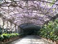 Image for La Concepción Botanical-Historical Gardens - Málaga, Spain