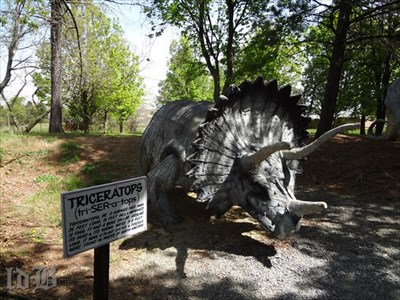 The triceratops had horns that were 3 to 6 feet long.