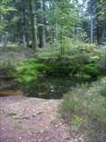 Image for Le bassin Taranis (St-Dié)