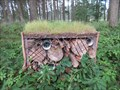 Image for Insect Hotel - 5th tee, Forfar Golf Course, Angus.