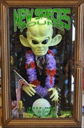 Image for Green Alien ~ Alien Beef Jerky - Baker, California