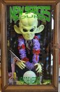 Image for Green Alien ~ Alien Beef Jerky - Baker, California