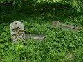 Image for zaniklý hrbitov  / abandoned cemetery, Boletice, Czech republic