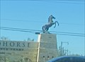 Image for Don't Tausch The Horse, San Antonio, TX