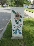 Image for Various Flowers - Greenfield, MA