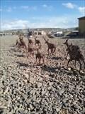Image for Twelve Antelope - Rock Springs WY