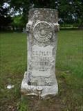Image for C.S. Tyler - Boxelder Cemetery - Boxelder, TX