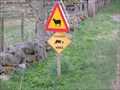 Image for Stockdog Crossing - Mid Derry, Angus.
