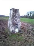 Image for Castle Hill Triangulation Pillar, Ashley, Cheshire, UK