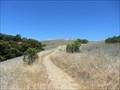 Image for Monte Bello Open Space Preserve - Palo Alto, CA