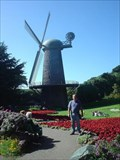 Image for Golden gate Park Windmill