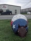 Image for Armadillo - Hamilton, TX