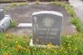 Image for William M. Trost - New City Cemetery, Galveston, TX