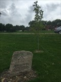 Image for Spirit of Walkerton Commemorative Tree - Walkerton, ON