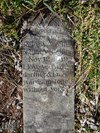 The heartfelt inscription on Dovey`s grave indicates the love of this pet`s owner.
