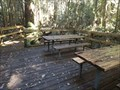 Image for Starrs Creek Boardwalk - Coorabakh NP, NSW, Australia