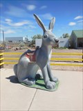 "Image for Jack Rabbit - ""Mental Giant"" - Joseph City, Arizona, USA."