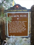 Image for Salmon Ruin