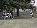 Image for The Herd - Abilene, TX