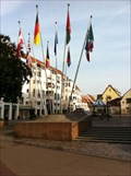 Image for Sister City Flags - Colmar, Alsace, France