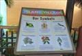 Image for Jamaican Symbols - Ocho Rios, Jamaica