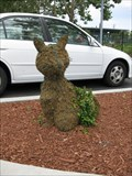 Image for Humane Society of Silicon Valley Topiaries - Milpitas, CA