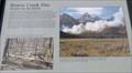 Image for Beaver Creek Fire - Teton National Park