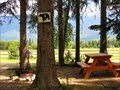 Image for Canoe River Campground - Valemount, British Columbia